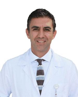 Prof. Dr. M. Cem Cv